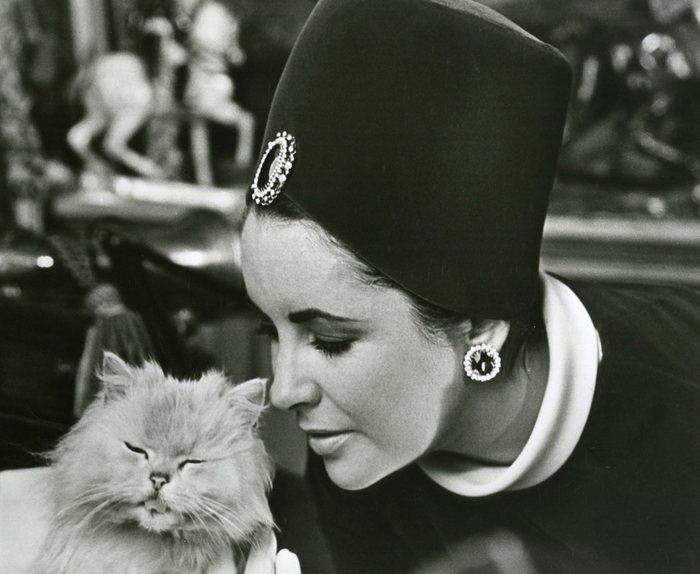 Elizabeth_taylor_with_kitty-_7x9_qiac6t