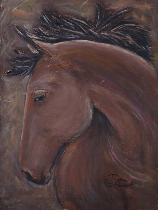 Bay-horse-head_egjkq4
