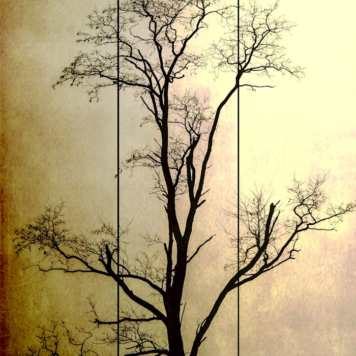 Arbor_trytych_one_master_copy_k4xssd
