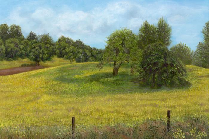 Spring_mustard_original_n8p1ym
