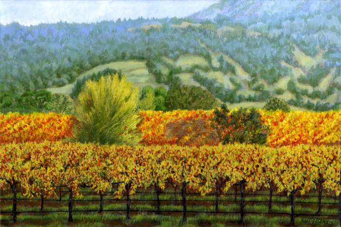 Sonoma_vineyard_original_fkmhmv
