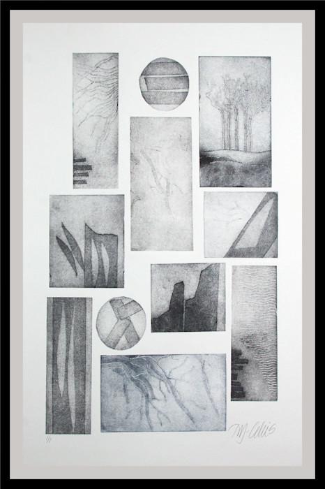 Driftwood_and_seaweed_framed_xdw6rt