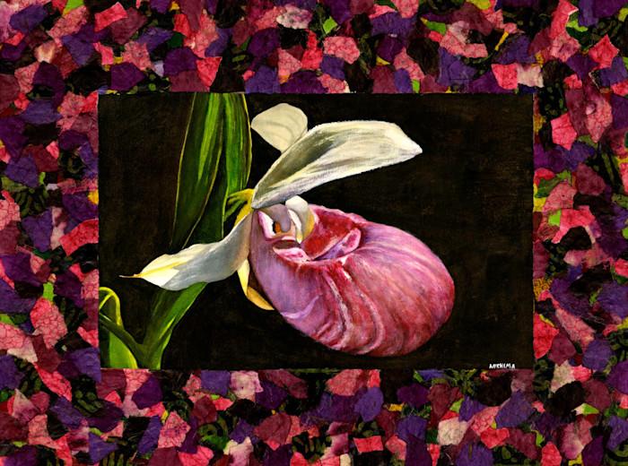 Pink_lady_s_slipper_orchid_small_wqyrtk