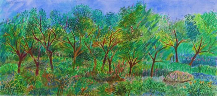 Landscape_my_backyard_late_summer_ieq0p7