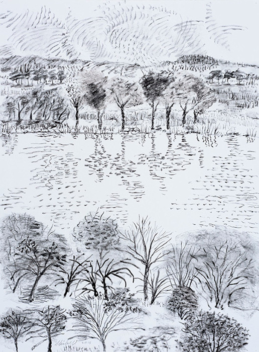 From_across_the_lake_graphite_charcoal_drawing_nu7o1e