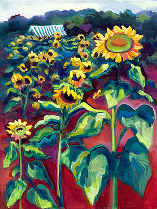 Sunflower_farm_3_sunny_fields_web_fo3kx8