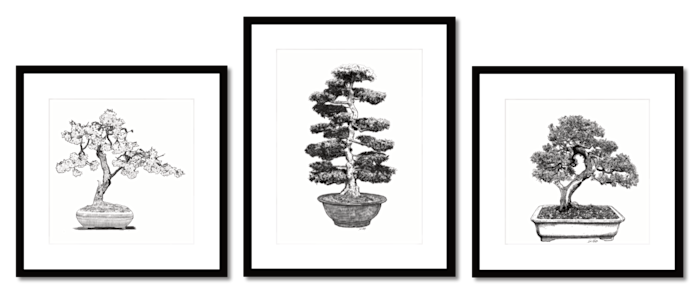 Bonsai_group_1b_rqs87k