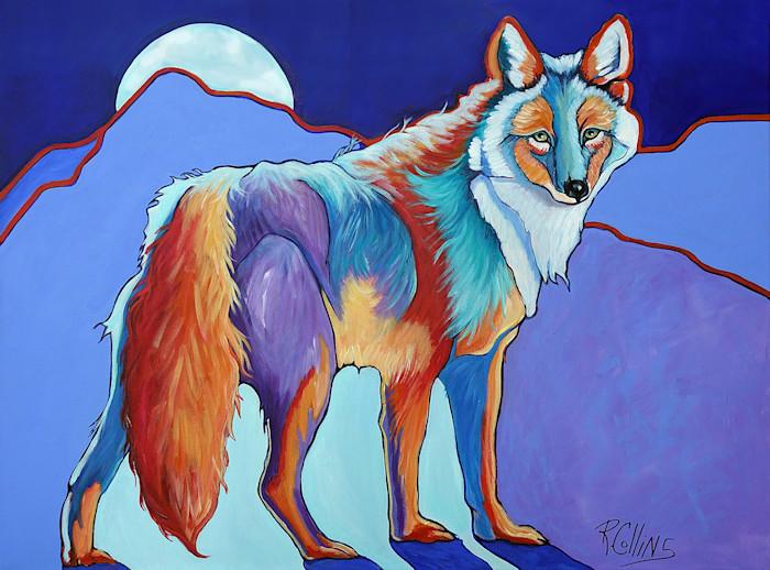 Coyote_art_store_front_zjcuy1