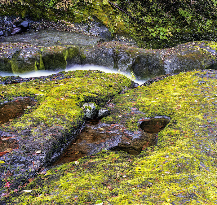 Metolius_stream_in_spring_large_mini_sea1hl