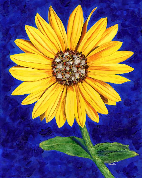 Sassy-sunflower-150_cvunma