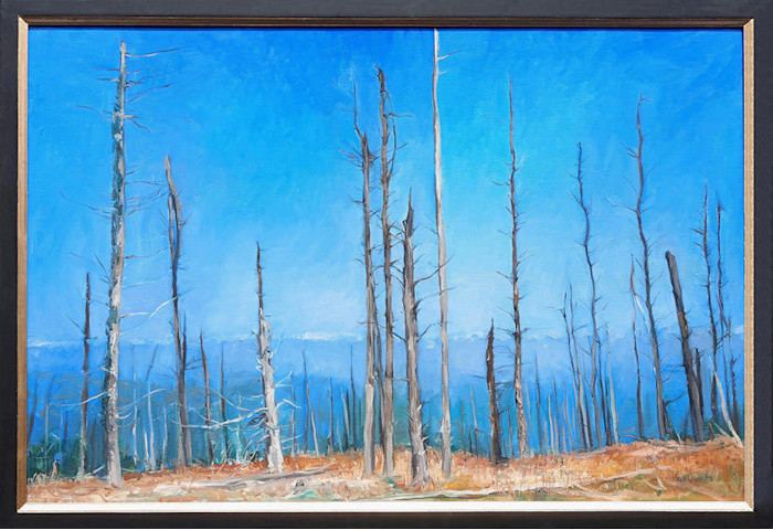 Kevin_grass-atop_mount_mitchell_framed-oil_on_canvas_painting_y0u6no