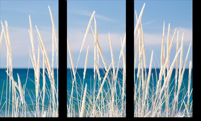Winter_bleached_marram_grass_triptych_waeldi