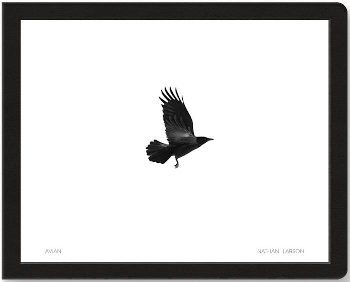 Avian_book_cover_2_vre83o