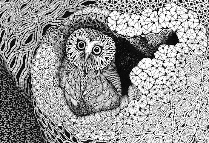 Owl_in_a_hollow_ftrucx