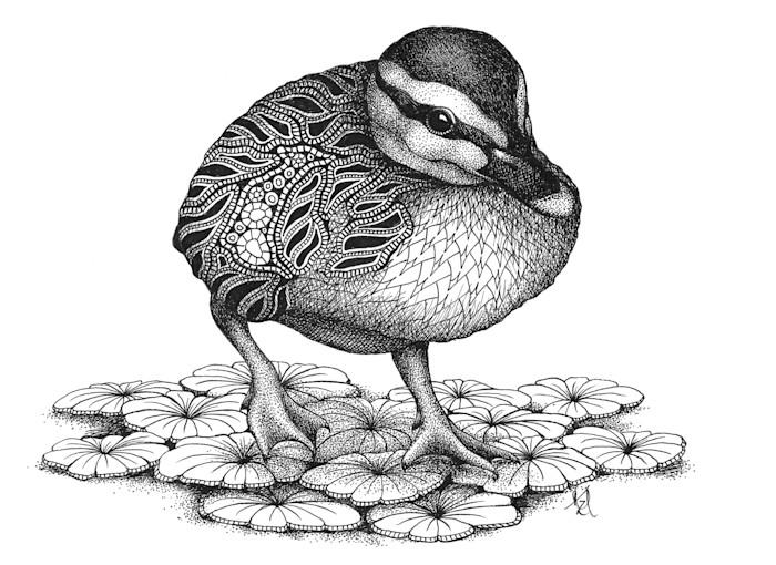 Duckling_njsba9