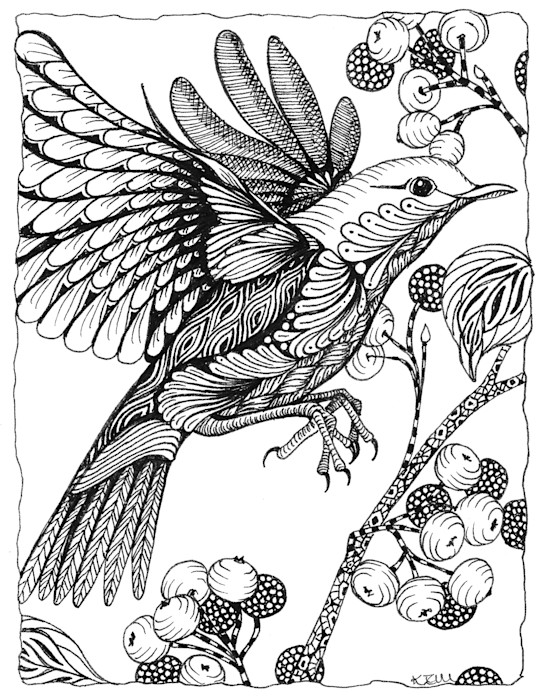 Bird_berries_pjwoib