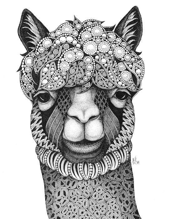 Alpaca_bvg1qz