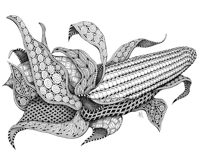 Harvest_corn_b6c2kw
