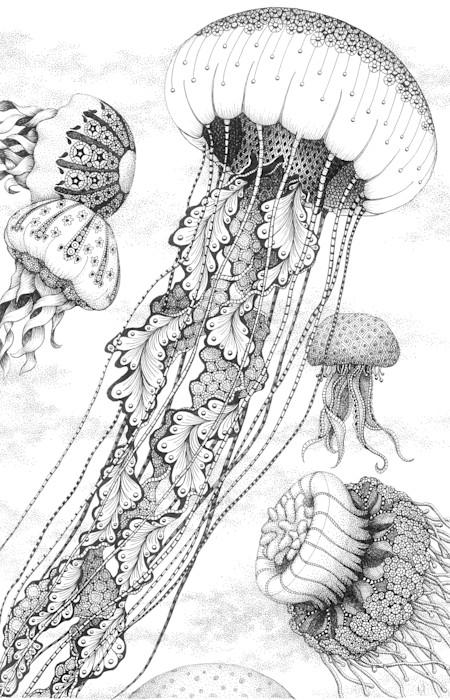 Jellyfish_dance_c3fuoq