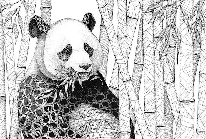 Panda_in_bamboo_tczan5