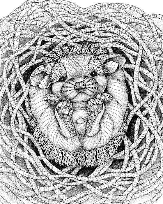Hedgehog_baby_o1twvi