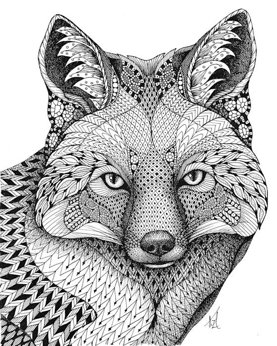 Fox_q0zitz