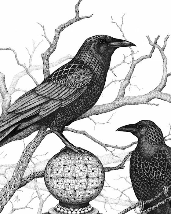 Crows_vwkzag