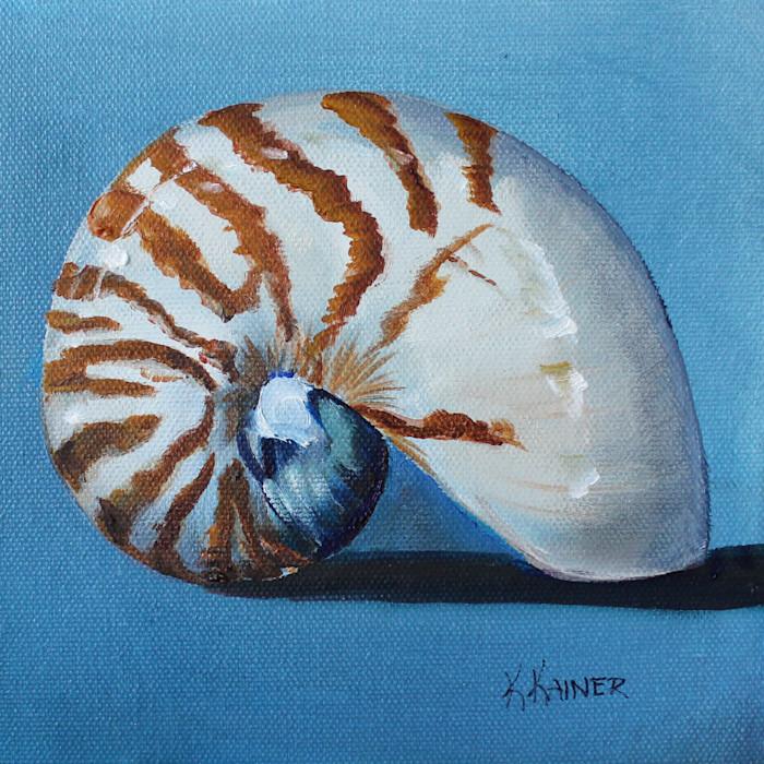 Nautilus_6x6_300_fc37me