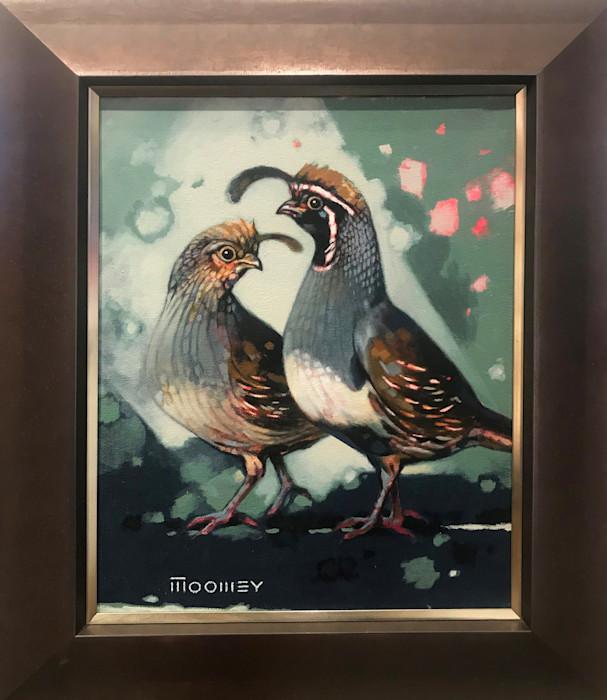 Moomey_gambels_quail_xggpck