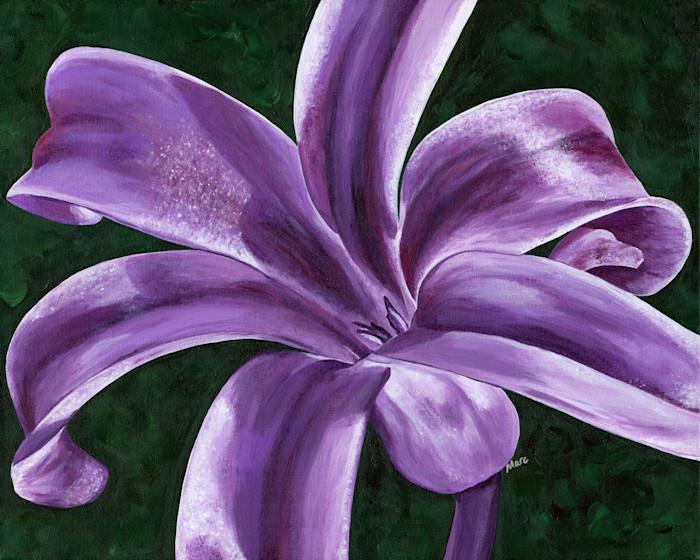 Hyacinth-200_rtkyw0