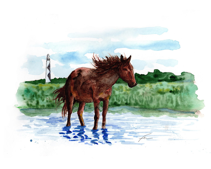 Wildhorse_my4do9