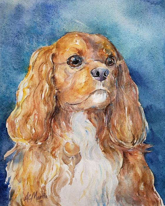 Augie_dog_portrait_s3qtny