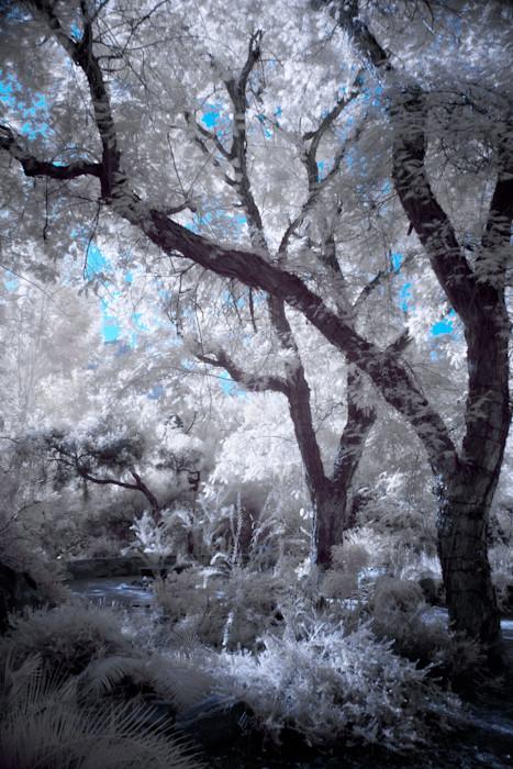 Des_171126_080-edit-edit-edit_setjm5