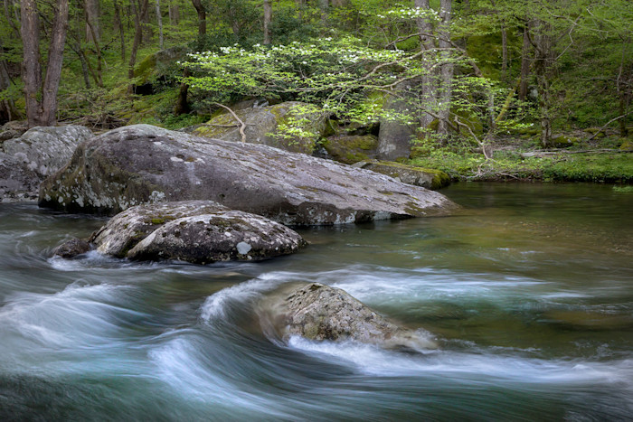 River-of-life_kaw2ji