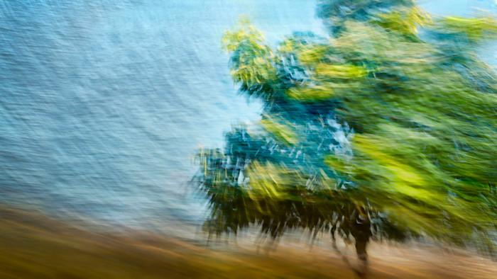 Kj_west-wind-web_hsygmb