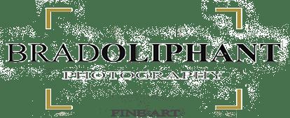 bradoliphantphotography