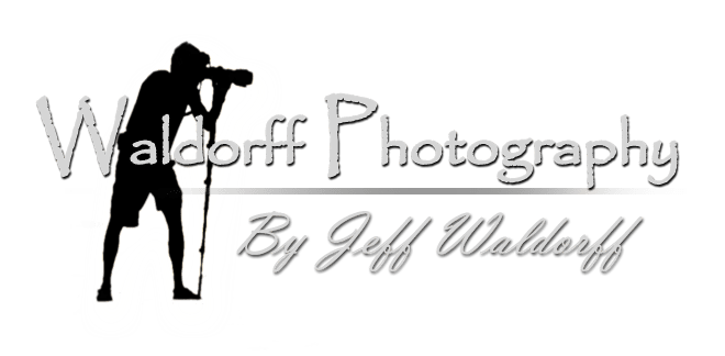 Waldorff Photography