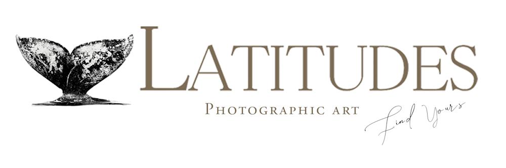 Latitudes Art Gallery