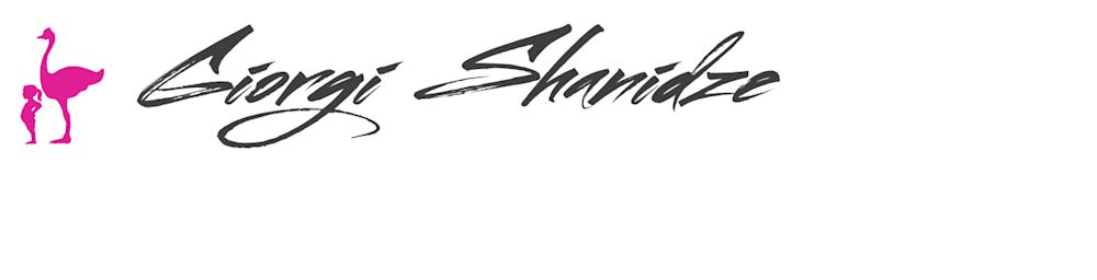 Giorgi Shanidze