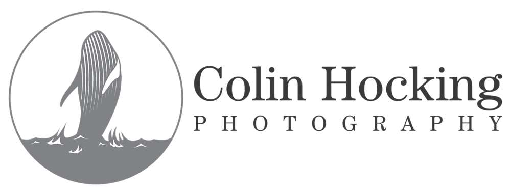 Colin Hocking Photography