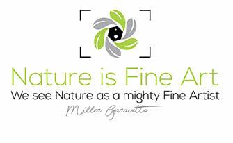 Nature is Fine Art