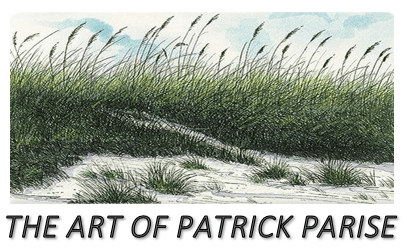 The Art Of Patrick Parise