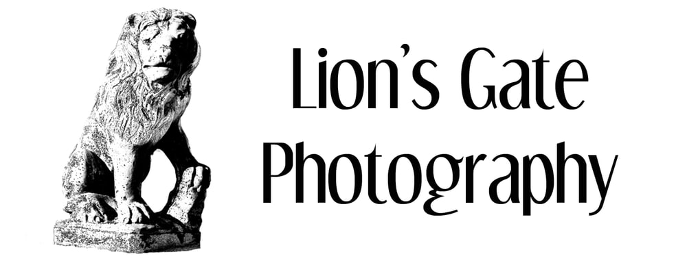 Lion's Gate Photography