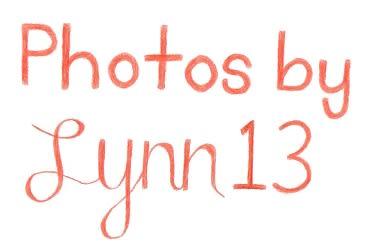 Photos by Lynn13