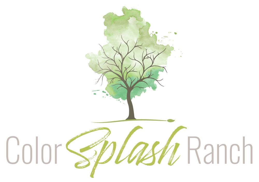 Color Splash Ranch