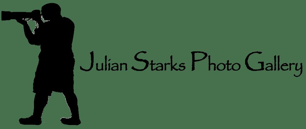 Julian Starks Photo Gallery