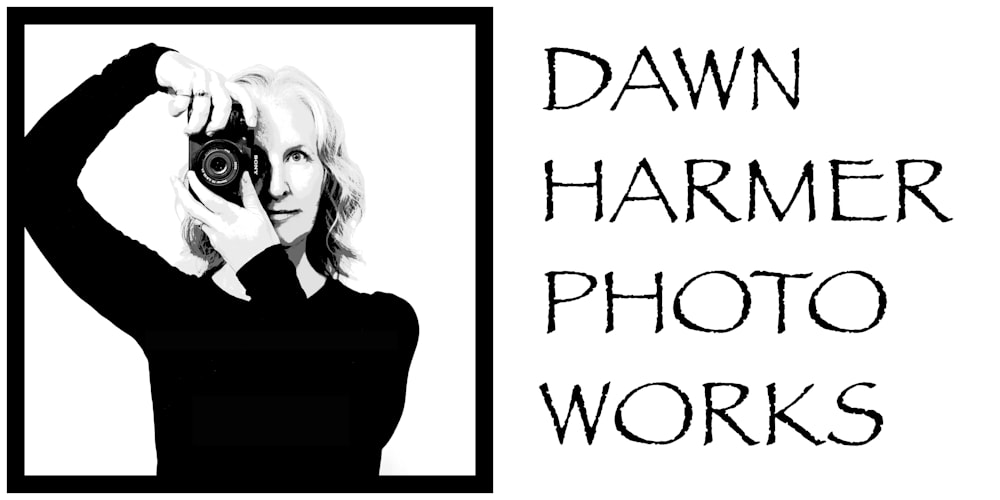 Dawn Harmer Photo Works