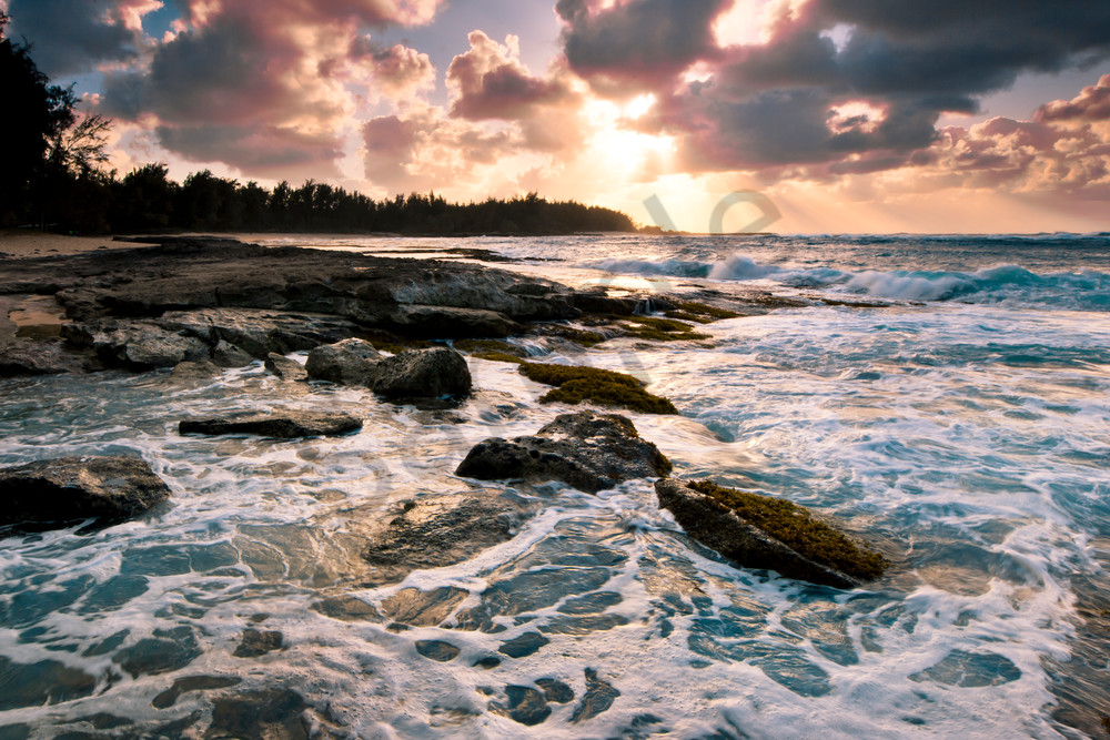 Hawaii Photography Turtle Bay Surf By Douglas Page