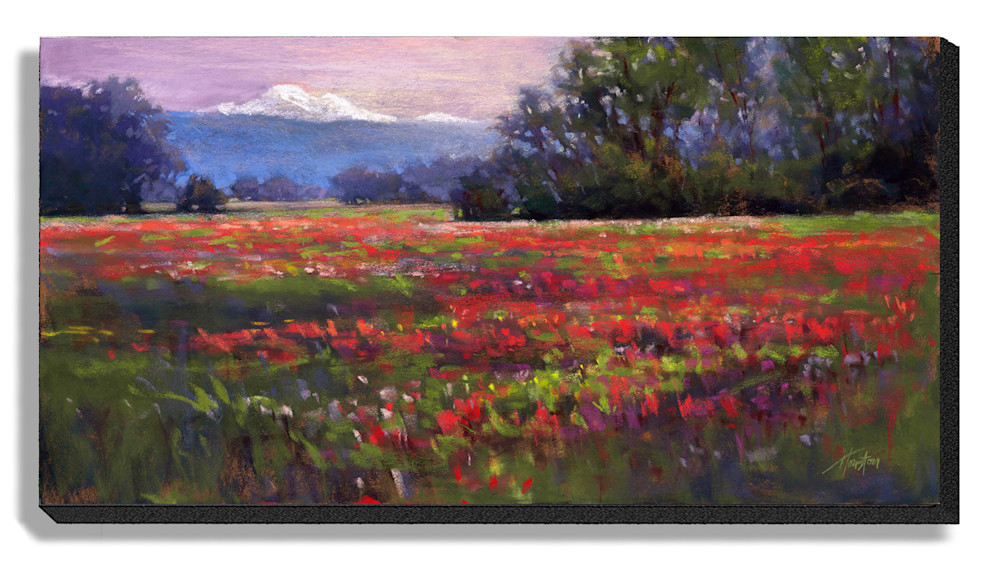 Skagit-Fields-24x48-cnqoif