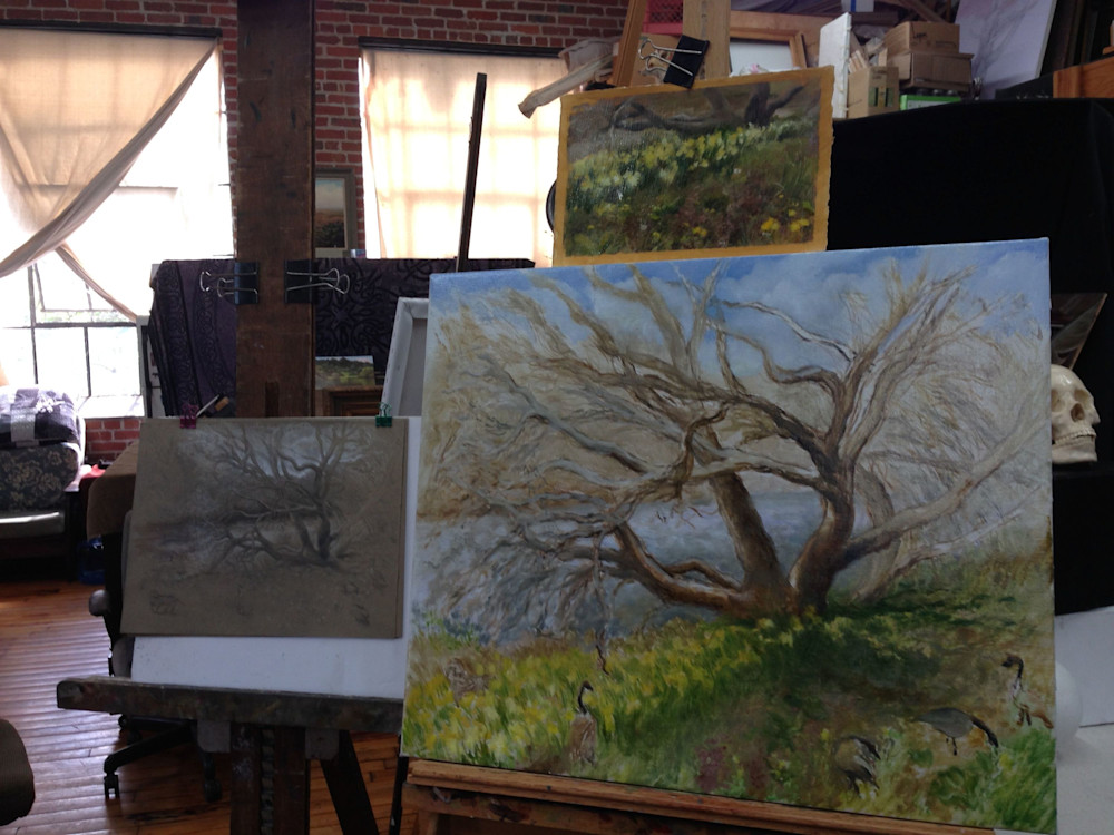 in-progress-Catawba-tree---Rafferty-gfhfvh